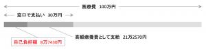 1ヶ月に100万円医療費がかかった場合の自己負担額イメージ